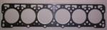 Ford Cargo Head Gasket Only